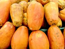 Papaia Imagens de Stock