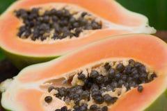 Papaia Fotografia de Stock Royalty Free