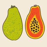 Papaia, ilustração do vetor Imagens de Stock