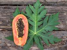 Papaia na madeira com papaia da folha imagem de stock