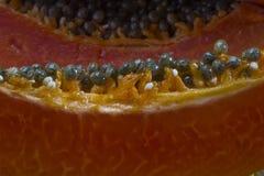 Papaia rossa Fotografie Stock Libere da Diritti