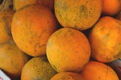 Papaie da vendere sul mercato del ` s dell'agricoltore Fondo di agricoltura Primo piano Vista superiore Fotografia Stock Libera da Diritti