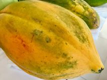 papaja stock foto's