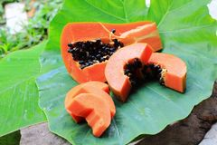 papaja royalty-vrije stock afbeeldingen