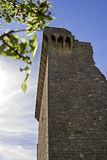 Papal Castle Ruins in Chateauneuf du Pape. A section of the ruins of the Papal Castel, new castel of the Pope, located near the city of Avignon in the French Stock Photography