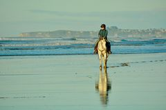 Papamoa Beach, Papamoa, New Zealand, July 07, 2019: an unidentified woman on a white horse at a seashore. stock photo
