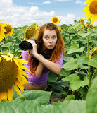 Paparazzi hiding in the bushes Royalty Free Stock Photography