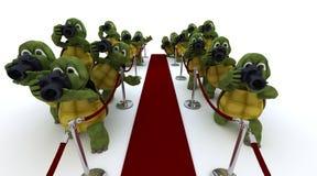 Paparazzis de la tortuga en la alfombra roja ilustración del vector