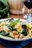 Papardelle met de kip en met de spinazie Stock Foto