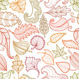Papattern of decorative leaves vector illustration