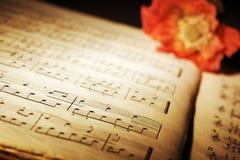 Papaver op muziekblad Royalty-vrije Stock Foto's