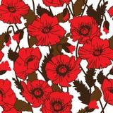 Papaver rhoeas also known as corn poppy, corn rose, field poppy,. Flanders poppy drawing. seamless pattern Royalty Free Stock Image