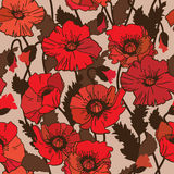 Papaver rhoeas also known as corn poppy, corn rose, field poppy,. Flanders poppy drawing. seamless pattern Stock Image