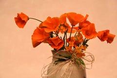 Papaveri arancioni Immagini Stock Libere da Diritti