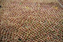Papaveri di Westminster Fotografia Stock Libera da Diritti