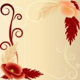 Papaveri rossi e beige con i riccioli Immagine Stock