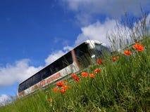 Papavero, bus ed autostrada Fotografie Stock