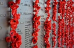 Papavers verlaten door bezoekers aan het Australische Oorlogsgedenkteken Stock Foto