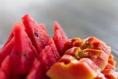 Papaya και καρπουζιών φέτες Στοκ Εικόνα