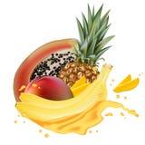 Papaya, μπανάνα, ανανάς, ρεαλιστικό τρισδιάστατο vecto παφλασμών χυμού μάγκο στοκ εικόνες