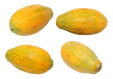 Papaya της Χαβάης Στοκ Εικόνες