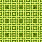 Papaya φύλλα Στοκ φωτογραφίες με δικαίωμα ελεύθερης χρήσης