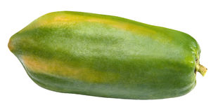 Papaya stockbild