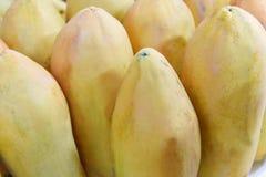 papaya fotografering för bildbyråer