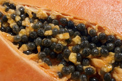 Papaya 2 stockbild