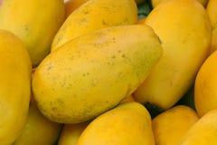 Papaya. The close-up of Papaya Royalty Free Stock Image