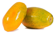 Papaya. royaltyfria bilder