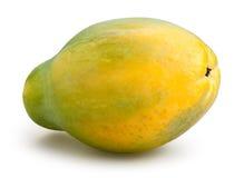 Papaya Στοκ Εικόνα