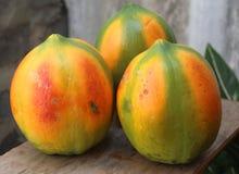Papaya Στοκ Φωτογραφίες