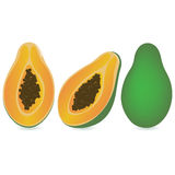 papaya lizenzfreie abbildung