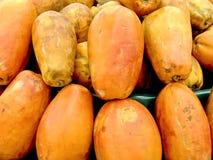 papaya Στοκ Εικόνες