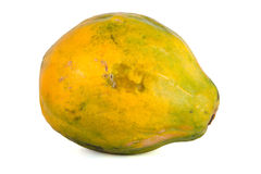 Papaya (Carica papaya) Stock Photos