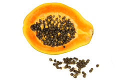 Papaya (Carica papaya) Stock Image
