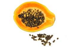 Papaya (Carica Papaya) Stockbild
