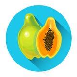 Papaya Colorful Fruit Icon Stock Photos