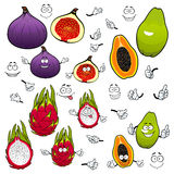 Papaya, dragonfruit, fig fruits cartoon characters. Cartoon flavorful green papaya, juicy pink dragon fruit and sweet purple fig fruits with funny comics faces Stock Images