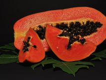 Papaya fruit isolated on black background stock images