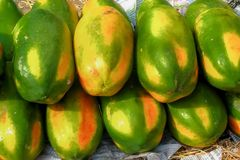 Papaya Fruit for sale. stock photography