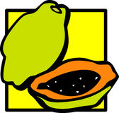 Papaya fruit vector illustration Stock Photo