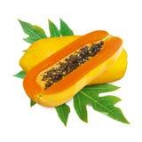 Papaya fruits isolated on white background. Delicious tropical papaya fruits with leaf isolated on white background Stock Photo