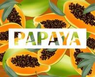 Papaya fruits pattern texture background. Summer tropical vector Royalty Free Stock Photos