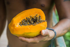 Papaya in hand Stock Photography