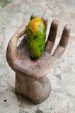 Papaya hand, skiva, tropisk frukt, hav, sand arkivfoto