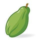Papaya Isolated Stock Image