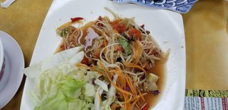 Papaya Laotion σαλάτα στοκ εικόνα με δικαίωμα ελεύθερης χρήσης