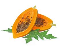 Papaya lokalisiert auf weißem backgroound Stockbilder